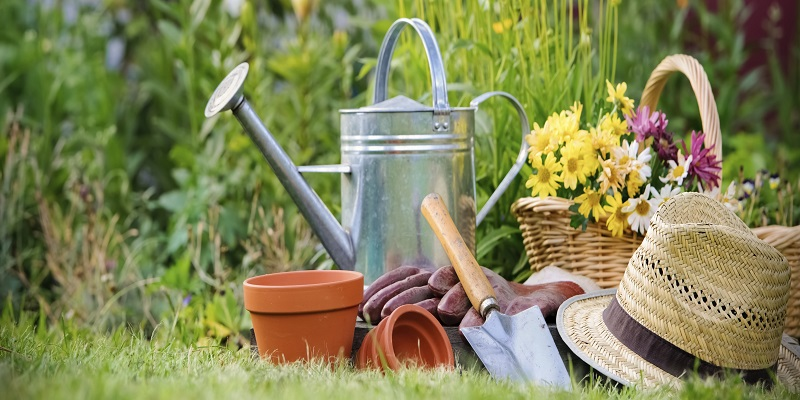 Gardening Products Market - Analysis & Consulting (2018-2024)