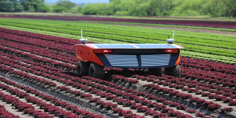Agricultural Robots Market - Analysis & Consulting (2019-2025)