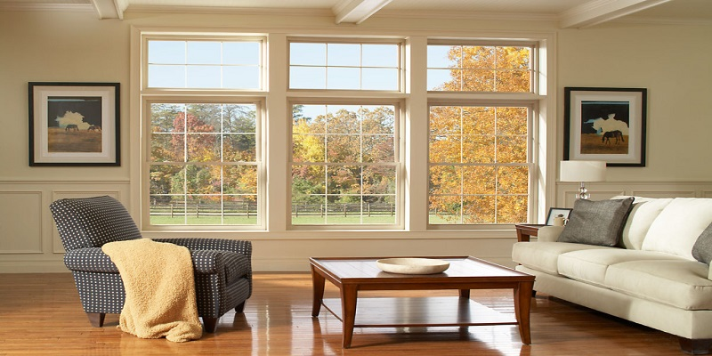 Vinyl Doors and Windows Market - Analysis & Consulting (2019-2025)