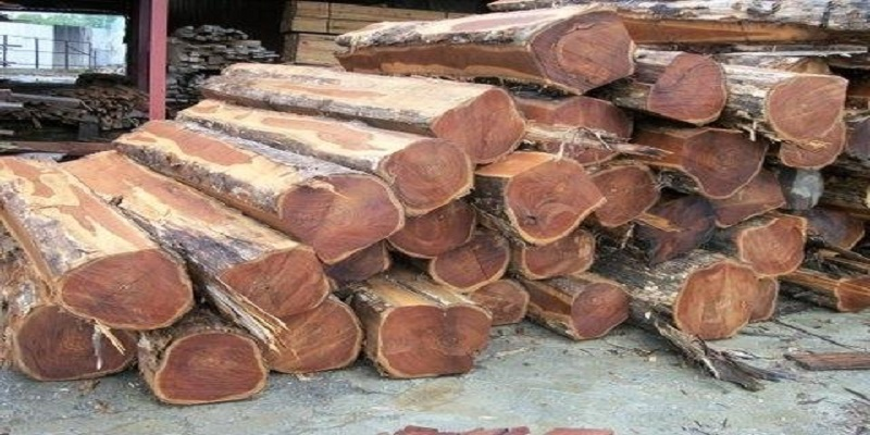 Industrial Round Wood Market - Analysis & Consulting (2018-2024)